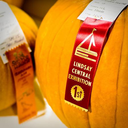 Lindsay Central Exhibition