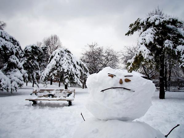 Winter in Ontario 2008